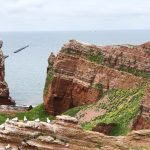 How to Visit Helgoland